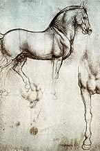 Leonardo da Vinci Study of Horses 1490 Drawing Sketch Diagram Cubicle Locker Mini Art Poster 8x12