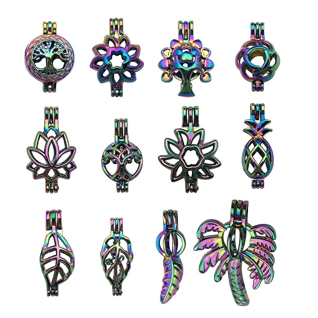 10pcs Mixed Shape Flora Rainbow Pearl Cage Bead Cages Pendants for Jewelry Making/Aromatherapy Essential Oil Scent Diffuser Locket Pendant m213 (Mixed No Duplicate)