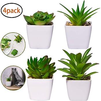 caffetteria ufficio 6 Pezzi Pianta Artificiale Vaso Piante Grasse YQing Piante Finte vasi piante fiori artificiali decorazioni Per soggiorno sala da pranzo