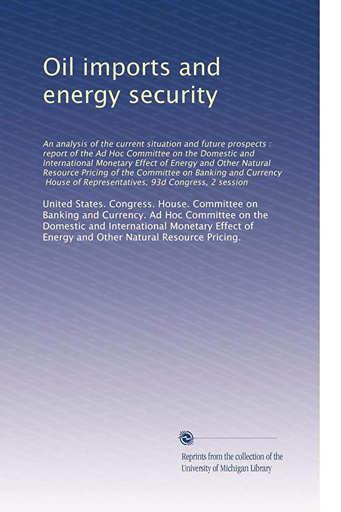 Oil imports and energy security: An analysis of the cur...