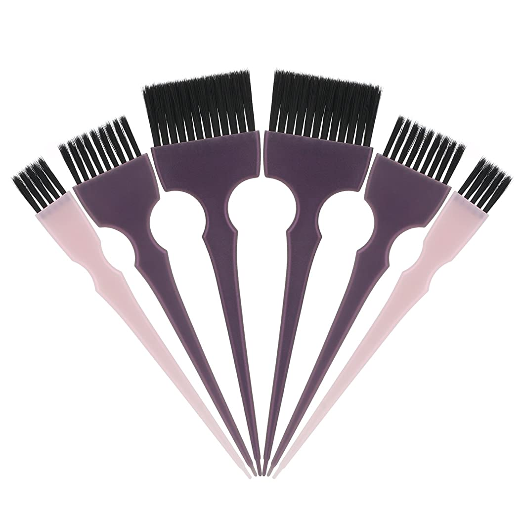 特異な評判勇者Segbeauty 髪染めのブラシ 六本のセット サロンの美髪用 プロのヘアカラーリング用