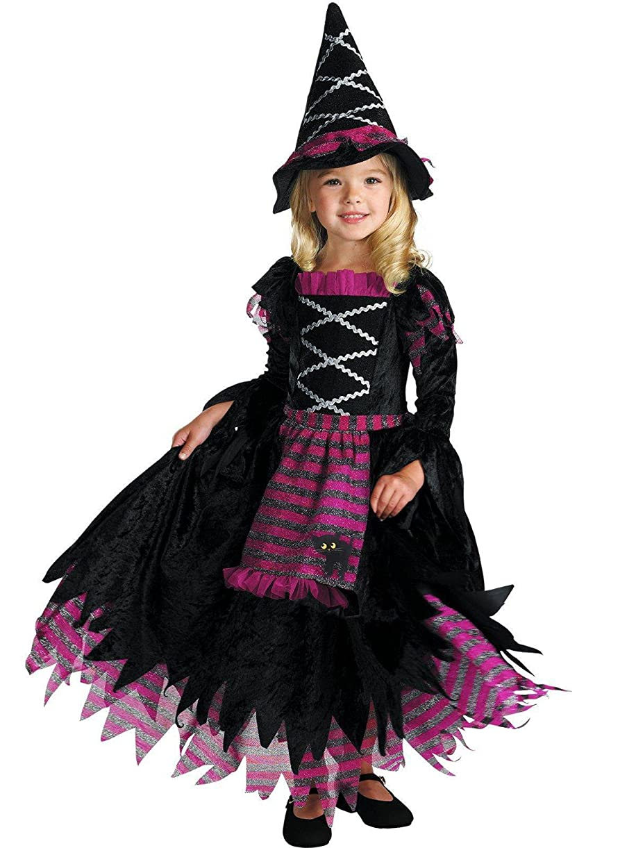 Disguise Fairytale Witch Costume hfudy2416