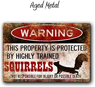 Fhdang Decor Squirrel Sign,Funny Metal Signs,Protected Squirrels,Squirrels Warning Sign,Pet Squirrel,Beware Squirrel Sign,Metal Sign