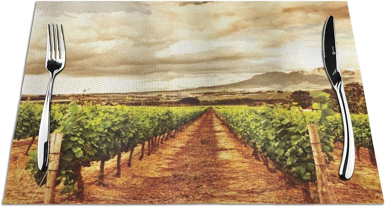 XINGAKA Mantel Individual,Las Nubes del Valle de la UVA sobre la plantación de Frutas Naturales del viñedo en el Tema del jardín de otoño,Manteles Individuales Resistentes al Calor y al Desgaste