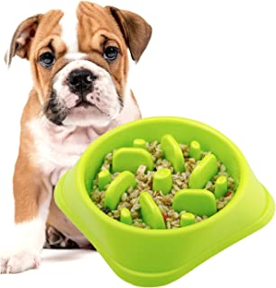 DotPet Slow Feeder Bowl, Fun Interactive Feeder Bloat Stop Dog Bowl Preventing Feeder Anti GulpingDrink Water Bowl Fan Shape Healthy Eating Diet for Pet Puppy