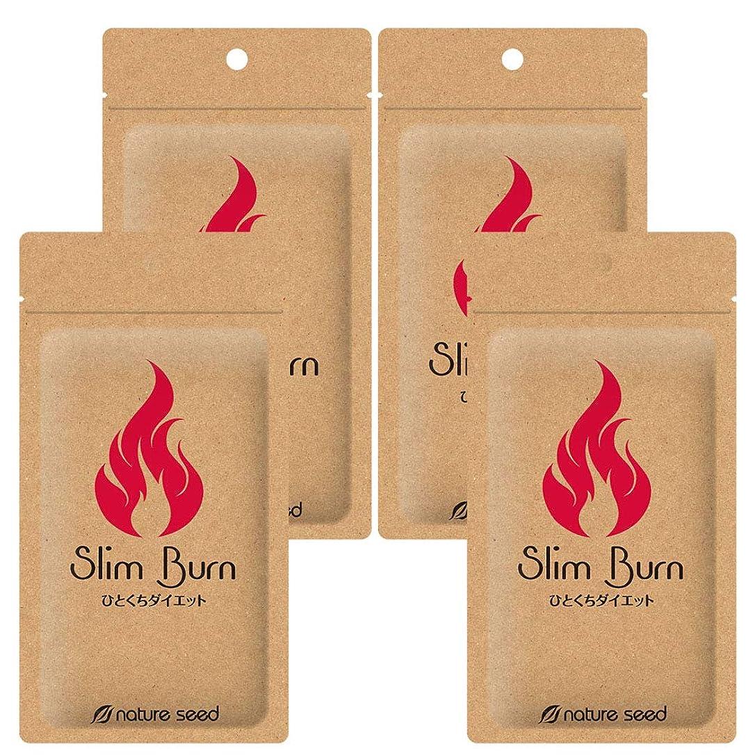 序文デザイナー掻く[燃焼サポートサプリ]ダイエット くびれメイク サプリメント スリムバーン 4袋(約120日分)