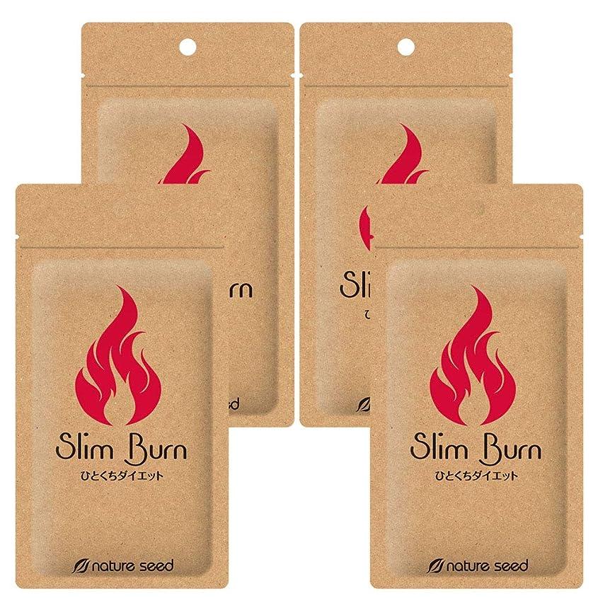 バース疎外道路[燃焼サポートサプリ]ダイエット くびれメイク サプリメント スリムバーン 4袋(約120日分)