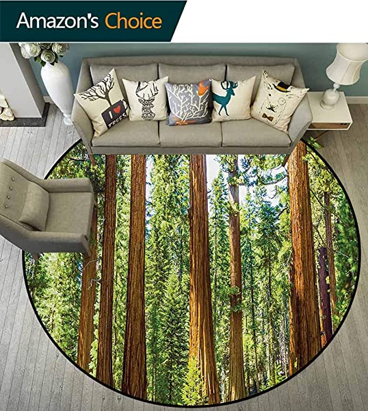 RUGSMAT National Parks Small Round Rug Carpet Up View Of Tree Branches In Scenic Springtime Conifers Sequoia Art Prints Door Mat Indoors Bathroom Mats Non Slip Diameter 47 Inch Green Brown