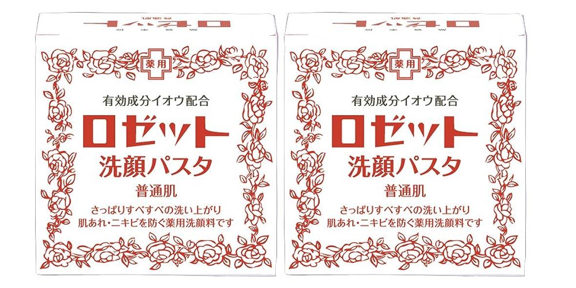 ほうき緑月曜日ロゼット洗顔パスタ 普通肌 90g×2個パック (医薬部外品)