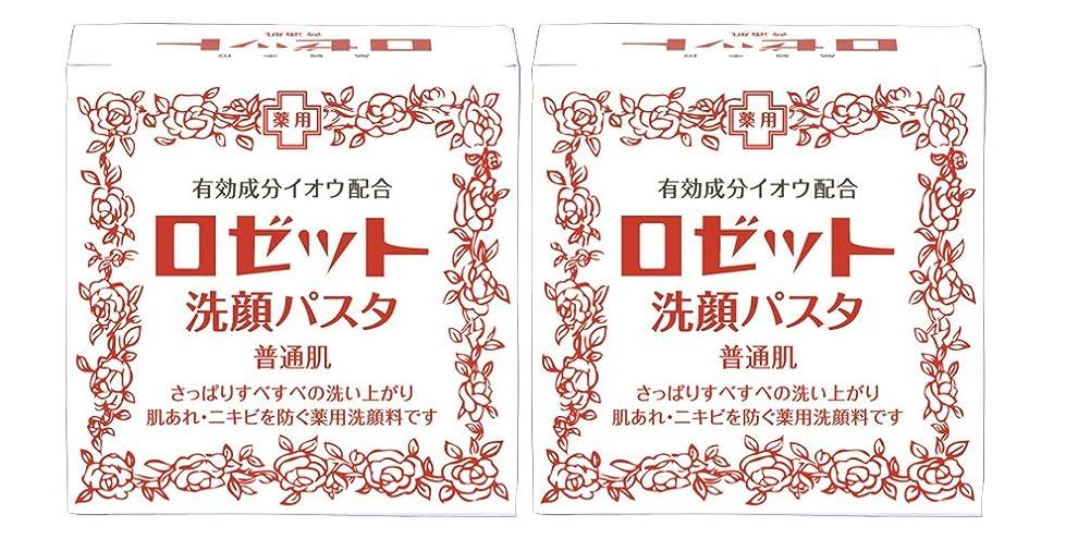 適用済み元の適用済みロゼット洗顔パスタ 普通肌 90g×2個パック (医薬部外品)