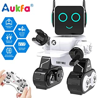 Best walking and talking robot Reviews