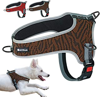 harness for dogs to pull carts