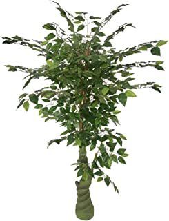 AMERIQUE Gorgeous Ficus Capensia Artificial Tree Silk Plant with Standable Trunk, UV Protection, Feel Real Technology, Super Quality, 5.3'/63