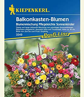 Balkonkasten-Blumenmix Pflegeleichte Sonnenkinder,1 Portion