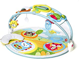 Skip Hop Explore and More Amazing Arch Activity Gym, 97 cm Length