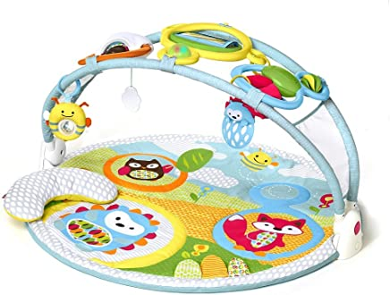 Skip Hop 303300 Explore & More Activity Gym