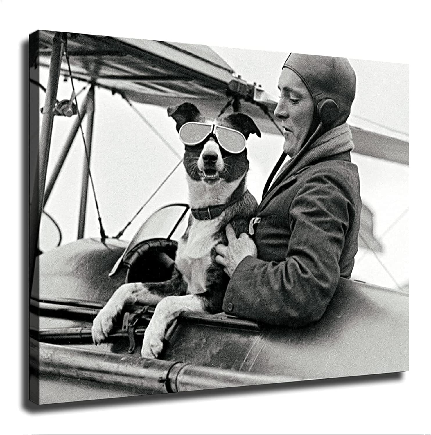 Dog Pilot Airplane Vintage Photograph Plane Aviator Flying sold out Gift San Francisco Mall