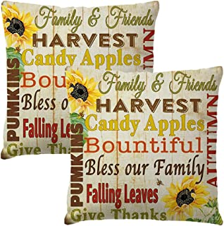 2Pack Pumpkin & Sunflower Pillow Covers Quotes Harvest Candy Apples Bountiful bless Our Family Thanksgiving Day Farmhouse ...