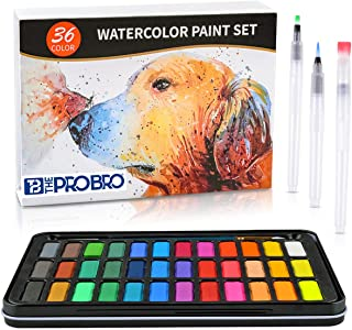 THE PRO BRO Watercolor Paint Set, 36 Premium Colors in Gift Box with Bonus Watercolor Paper Pad and Water Brushes, Perfect...