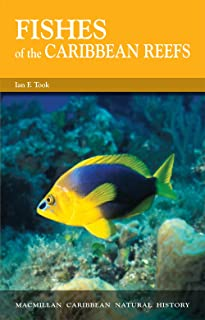 Fishes of the Caribbean Reefs (Caribbean Pocket Natural History Series)