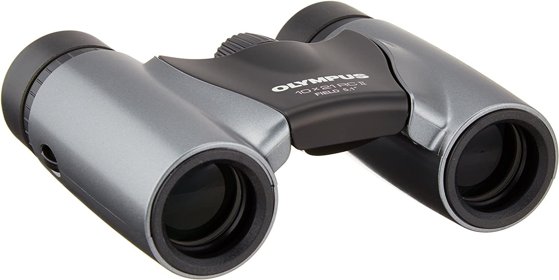 Olympus 10x21 Dpc I Fernglas Silber Mit Tasche Kamera