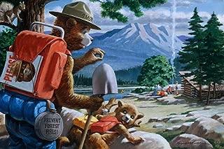 Best vintage smokey camper Reviews