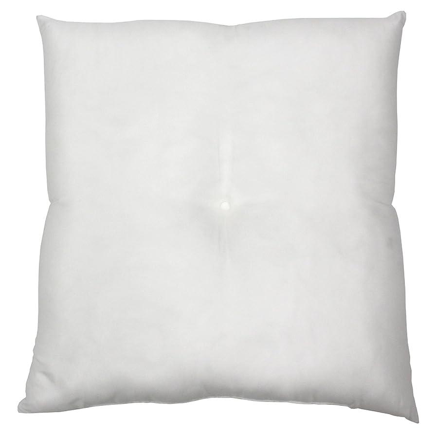 不名誉航海の航空便ヌード座布団 ザブトン クッション 中身 日本製 シリコン綿 洗濯可能 55×59cm 2個セット