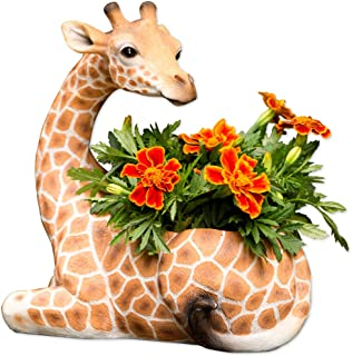 Bits and Pieces - Indoor/Outdoor Giraffe Planter - Wildlife Animal Urn for Plants - Durable Polyresin Safari Inspired Décor