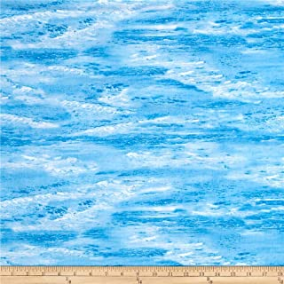 Timeless Treasures 0512261 Beach Haven Fabric by The Yard, Water