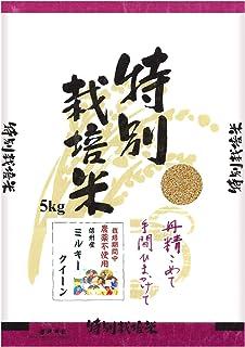 【新米】【玄米】信州産 農薬不使用米 ミルキークイーン 5kg 令和2年産