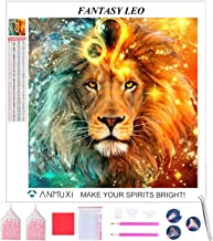 ANMUXI 5D Diamond Painting Kit Full Square Drill Mosaic Kits Diamond Dots Art Rhinestone Canvas Embroidery Cross Stitch Fa...