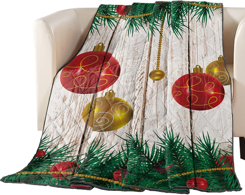 Down Alternative Popular popular Reversible Comforter Merr Quilted Ranking TOP3 Blanket Throw