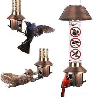 Best squirrel proof hopper bird feeder Reviews