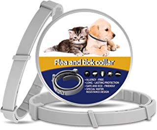 Pet Collar Cats Adjustable Waterproof