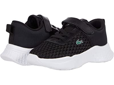 Lacoste Kids Court-Drive 0120 1 SUI (Toddler/Little Kid) (Black/White) Kid