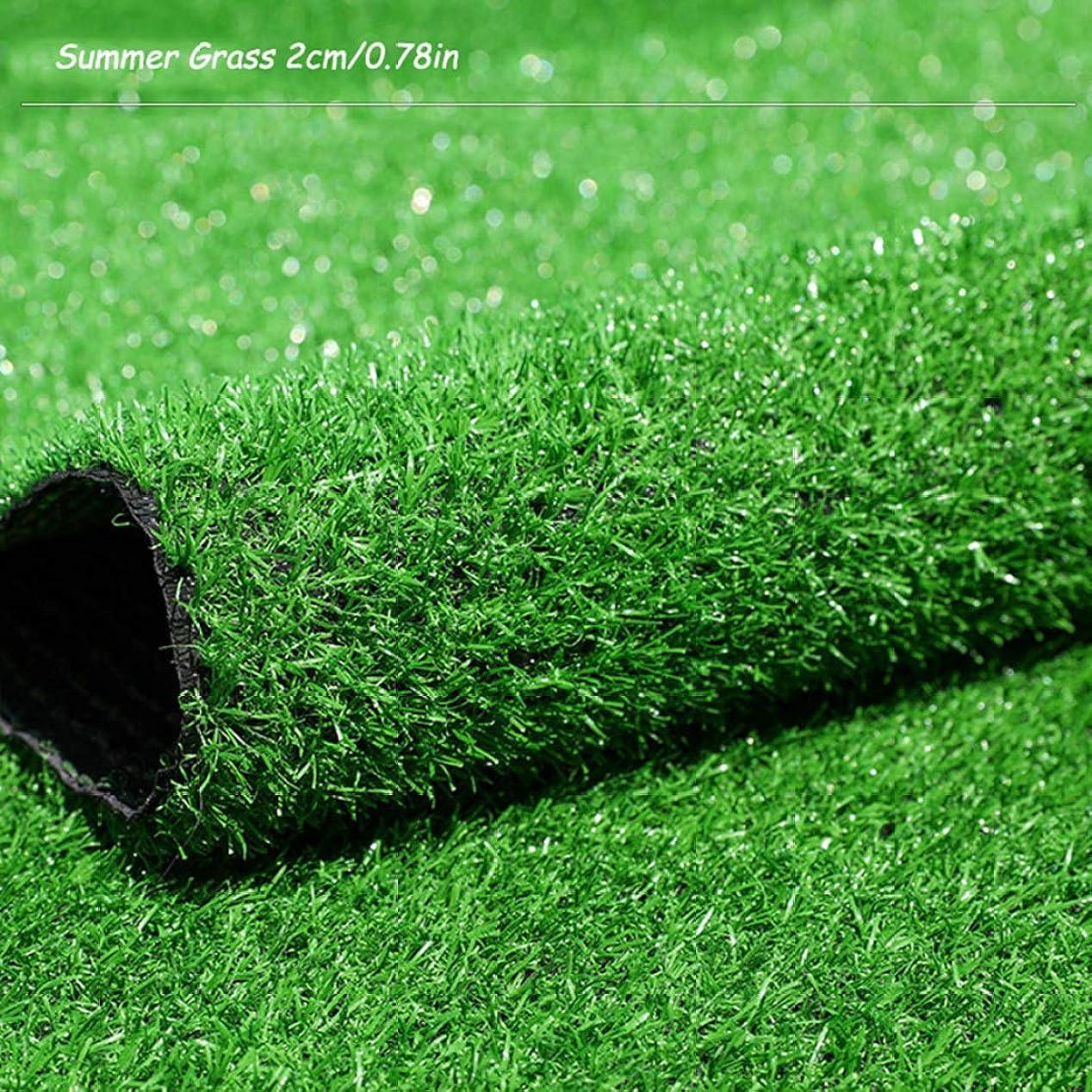抵抗する願望ボックスJLDN 人工芝カーペット、人工フェイクグラスカーペット ドレン穴付き ラバーバッキング 屋外の庭の装飾 2センチメートル/ 0,78inパイル高さ,Summer Grass_4x2m/12x6ft