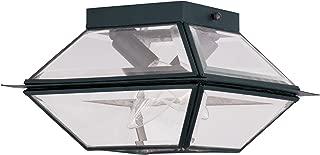 Livex Lighting 2184-04 Westover 2-Light Outdoor/Indoor Ceiling Mount, Black