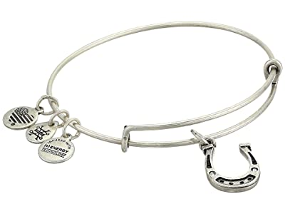 Alex and Ani Horseshoe Bangle Bracelet (Rafaelian Silver) Bracelet