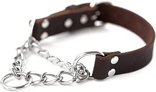 leather choker dog collar