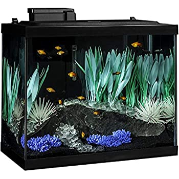 Tetra ColorFusion Aquarium 20 Gallon Fish Tank Kit, Includes LED Lighting and Decor
