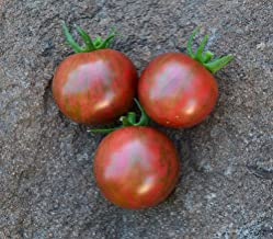 Purple Bumblebee Tomato Seeds - 5+ Rare Seeds + FREE Bonus 6 Variety Seed Pack - a $29.95 Value! Packed in FROZEN SEED CAPSULES for Growing Seeds Now or Saving Seeds For Years