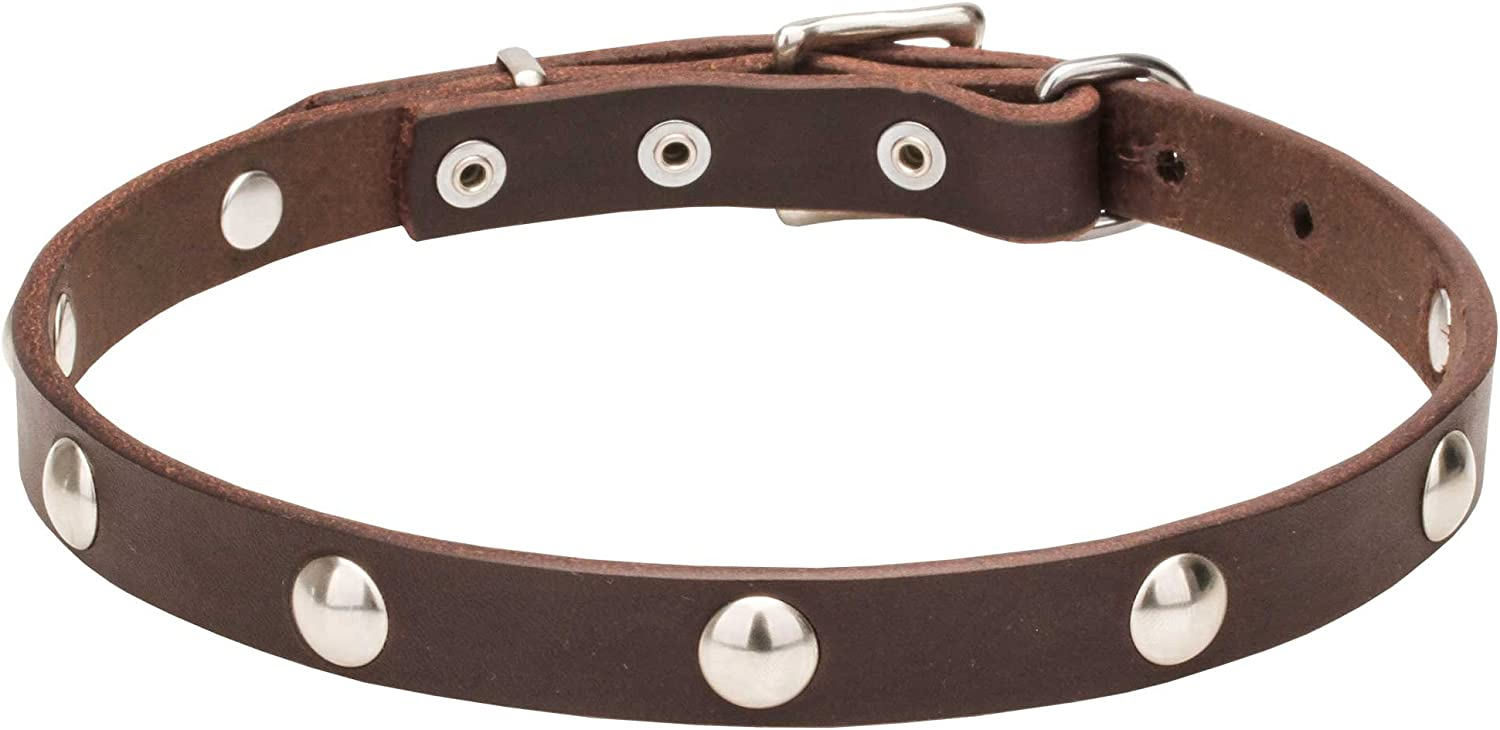 30 inch Brown Leather Dog Collar with HalfBall Chrome Plated Studs   Shiny Necklace   3 4 Inch (20 mm)