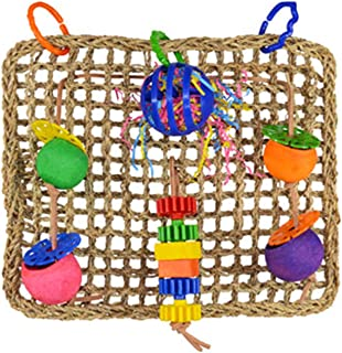 "Super Bird SB746 Seagrass Foraging Wall Bird Toy with Colorful Fun Gears, Large Size, 4"" x 14"" x 14"""