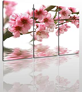Peach Blossom Canvas Wall Art Painting Modern Design Picture for Home Office Decor - 3 Pieces Water Flower Framed On Wooden Frame Image Pictures Photo Artwork Decoration Ready to Hang