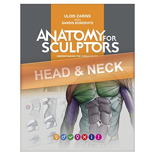 Anatomy 4 Sculptors Pdf