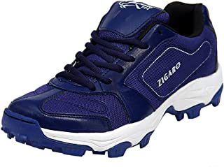 ZIGARO Radiant (10, Blue)