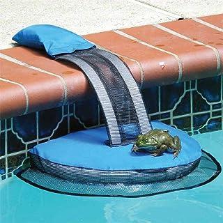 Amazon.es: rampa piscina perros