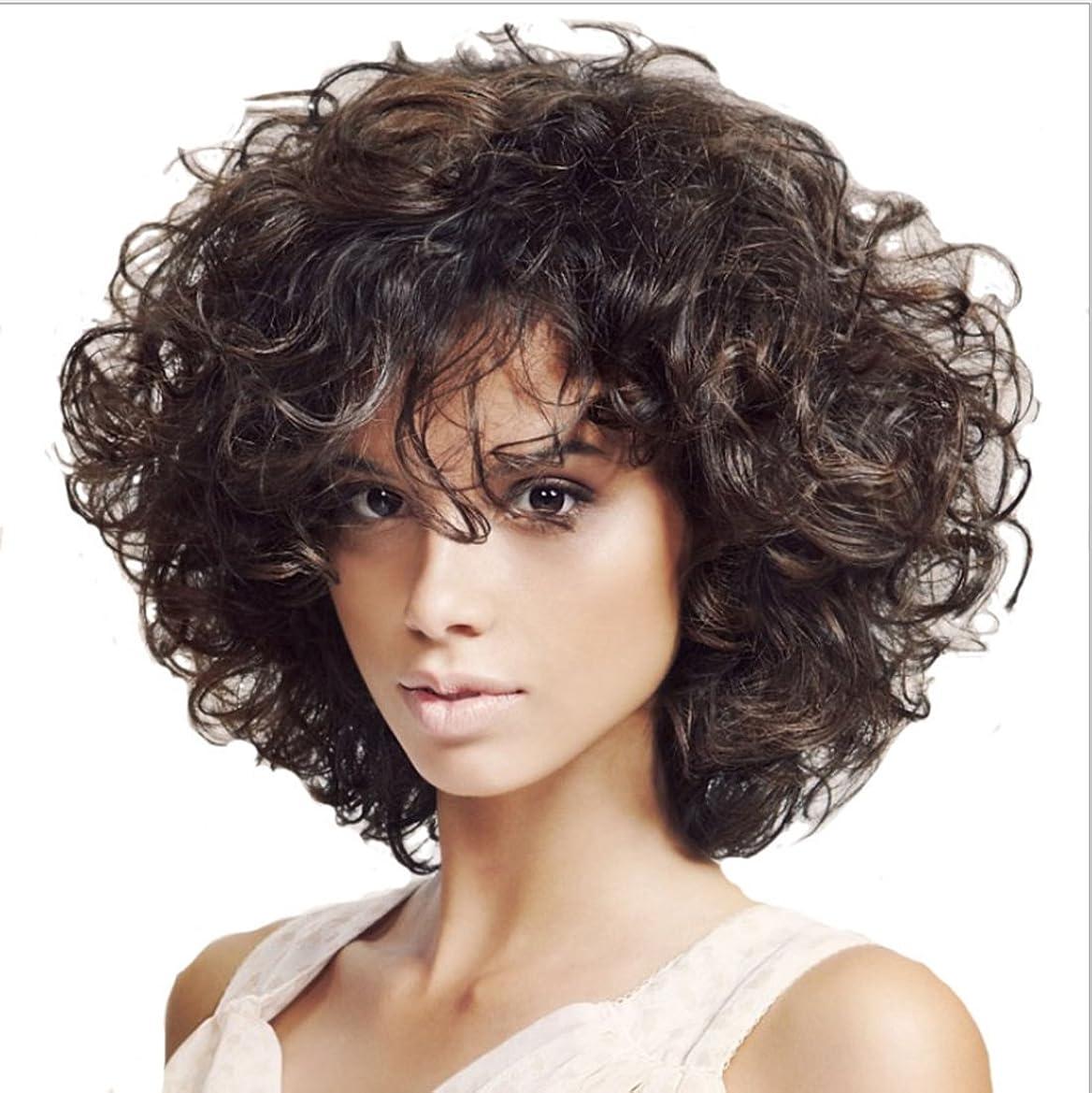 リネンプレートバクテリアJIANFU 女性のための13inch高温のかつら部分的なバグのウィッグの短い縮毛髪耐熱性のためのふわふわした小さいウィッグ(ダークブラウン) (Color : Dark brown)