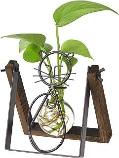 Marbrasse Desktop Glass Planter Vase Holder, Modern Creative Cat Plant Terrarium Wooden Stand for Hydroponics Plants Home ...