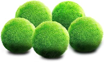 Luffy Marimo Moss Balls, Perfect for Betta, Neon, Tetra, Guppies, Playts and Molly, Marimo Balls for Tank Beautification, Gives Swimming Space to Community Fish, Low Maintenance